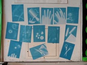 Activity: Creating Sun Prints (even inJanuary!)